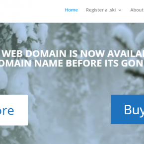 Should I buy a .ski domain extension?