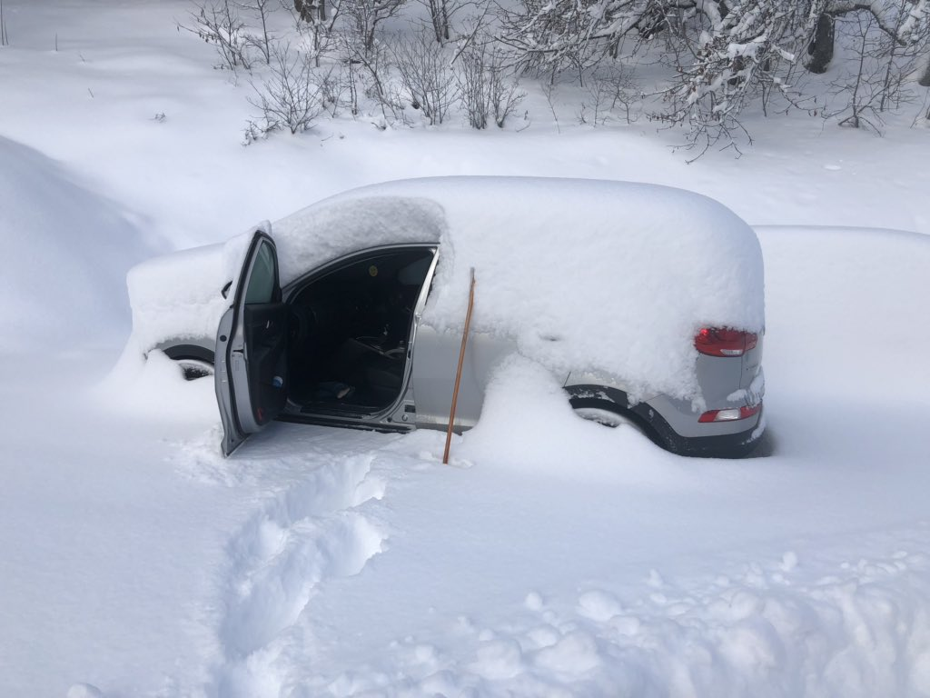 Even more pictures of cars covered in snow… | Skipedia